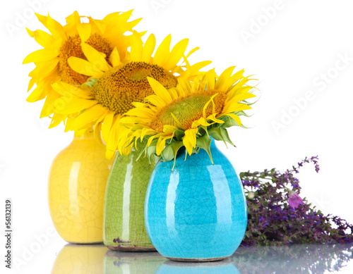 Beautiful sunflowers in color vases and wild flowers, isolated