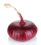 Fresh red onion isolated on white