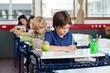 Schoolchildren Writing In Books At Desk