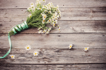 chamomile on wooden background
