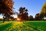 Late summer, autumn sunset in a park