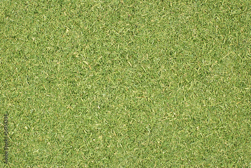 Dill tops or grass clippings background