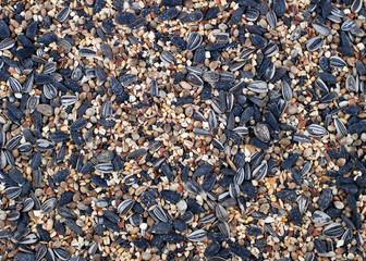 Bird seed background