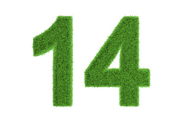 Number 14 with a green grass texture