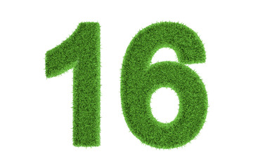 Number 16 with a green grass texture