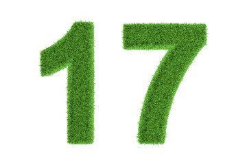 Number 17 with a green grass texture