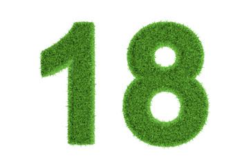 Number 18 with a green grass texture