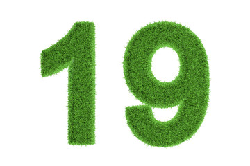 Number 19 with a green grass texture