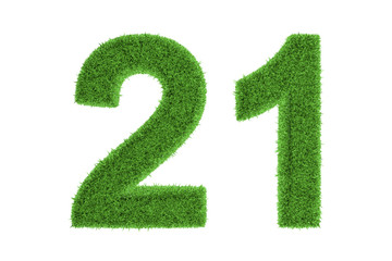 Number 21 with a green grass texture