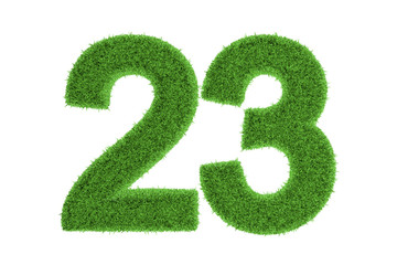 Number 23 with a green grass texture