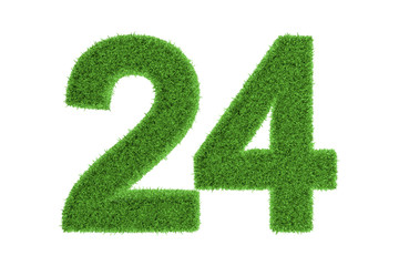Number 24 with a green grass texture