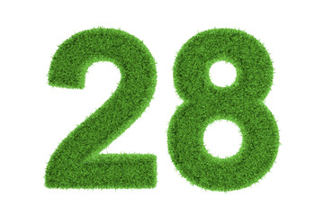 Number 28 with a green grass texture