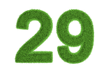 Number 29 with a green grass texture