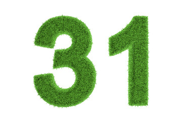 Number 31 with a green grass texture