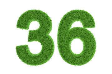 Number 36 with a green grass texture