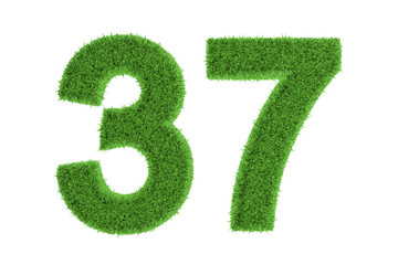 Number 37 with a green grass texture