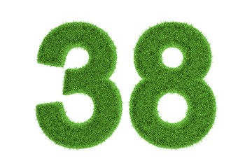 Number 38 with a green grass texture