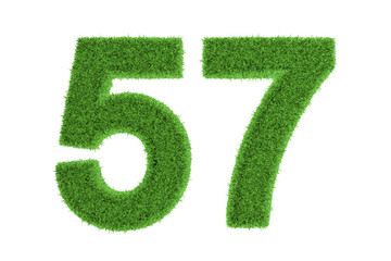 Green eco-friendly symbol of number 57, on white