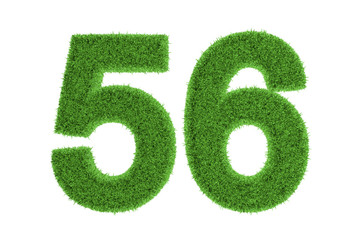 Green eco-friendly symbol of number 56, on white