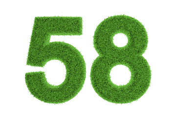 Green eco-friendly symbol of number 58, on white