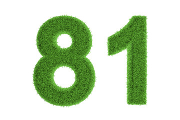 Number 81 with a green grass texture