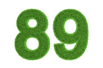 Number 89 with a green grass texture