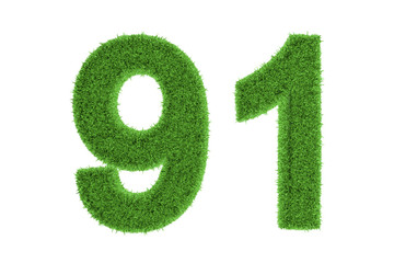 Number 91 with a green grass texture
