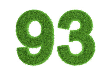Number 93 with a green grass texture