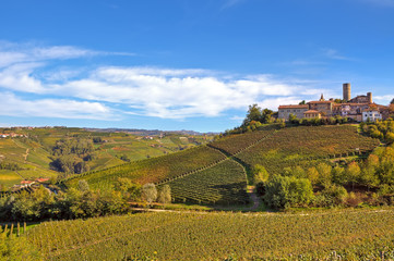 Small italian town on the hill with vineyards.