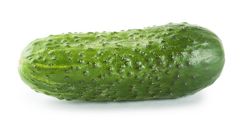 Bright ripe cucumber