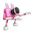 To the Left toward the Pink Camera Character guide you. Create 3
