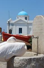 Grèce pélican