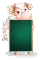 A shy sheep holding an empty blackboard