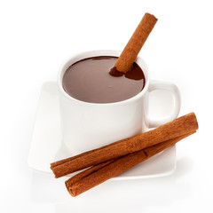 Hot chocolate in mug with cinnamon sticks
