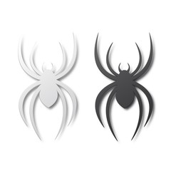 Black and white spiders