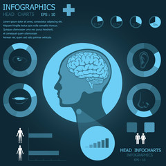 Head Infographic Infocharts