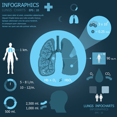 Lungs Infographic Infocharts