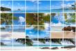 les Seychelles : plages, mer, cocotiers ...