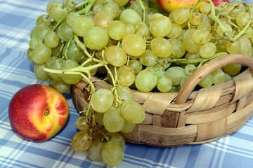 Cestino della frutta