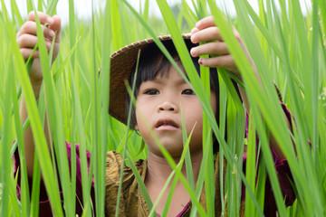 Mädchen im Reisfeld