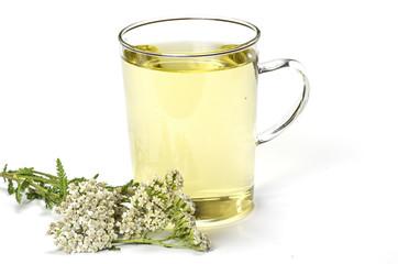 Teetasse mit Kräutertee
