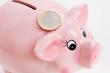 Sparschwein mit Euromünze