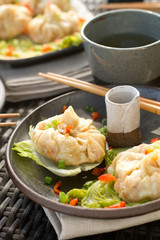 steamed dumplings macro