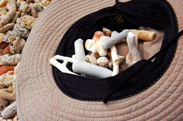 Sun hat and shells on tropical coral beach.
