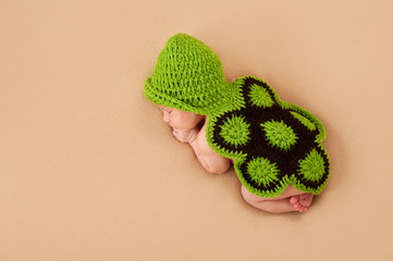 Sleeping Newborn Baby in Turtle Costume