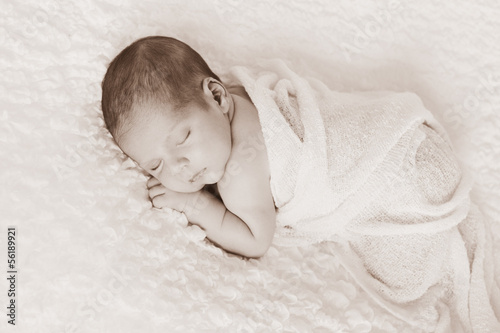 Sepia Toned Newborn Baby Boy Portrait