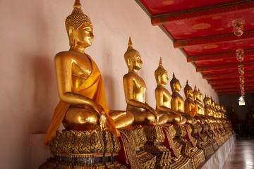 many of buddha statue line up