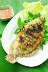 fish grilled with spicy salt in plate , Thai food style