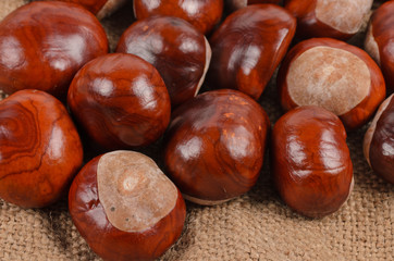 Whole autumn chestnuts