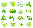Set of eco leaf infographic design templates